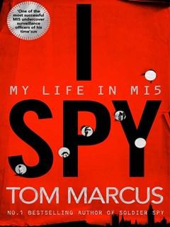 I-Spy-book-review.jpg