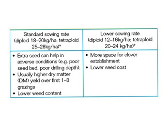Choosing-sowing-rates-for-perennial-ryegrass-table.jpg