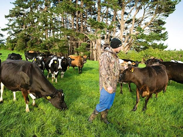 Farm-fit-Kane-Brisco-5.jpg
