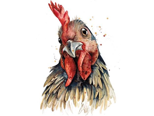Chicken-Card.jpg