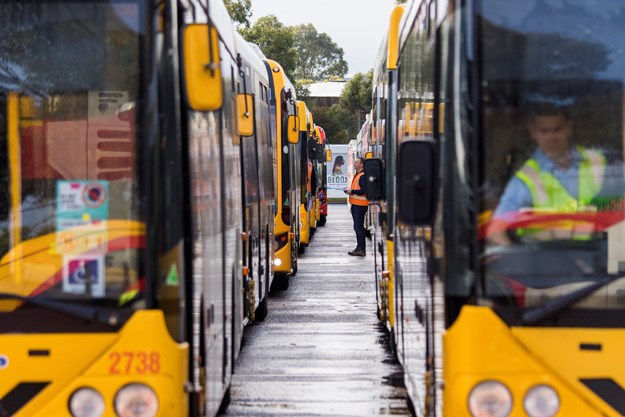 Buses-Lined-up-Day-1 (2).jpg