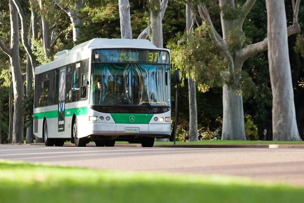 Transperth bus 3 (2).JPG