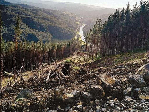 Forestry-logging-tolaga-bay-gisborne-storm-1.jpg