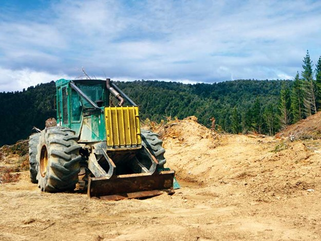 Manging-your-business-properly-forestry-commentry.jpg