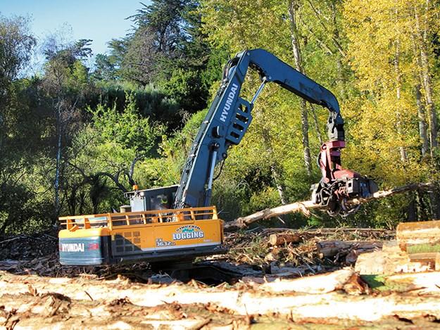 Porter-Equipment-forestry-Hyundai-FX-Series-log-loader-2.jpg