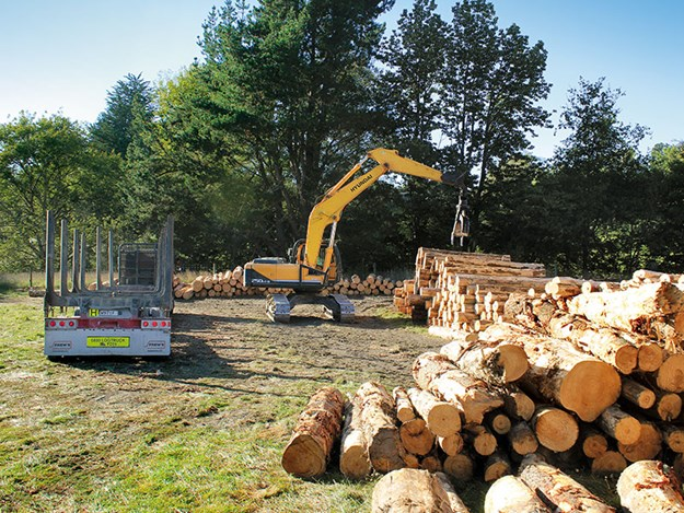 Porter-Equipment-forestry-Hyundai-FX-Series-log-loader-3.jpg