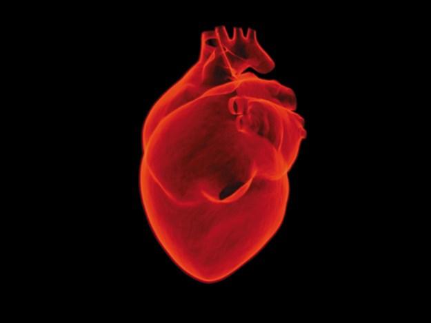 heart-1767552.jpg