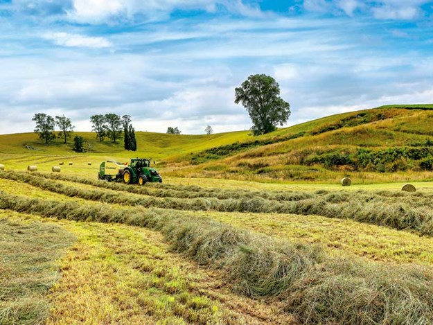 farming-New-Zealand.jpg