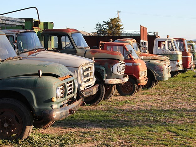 from left to right an old Bedford, International, Ford, miniature Daihatsu; Austin, cabover Ford, cabover Dodge and cabover Bedford