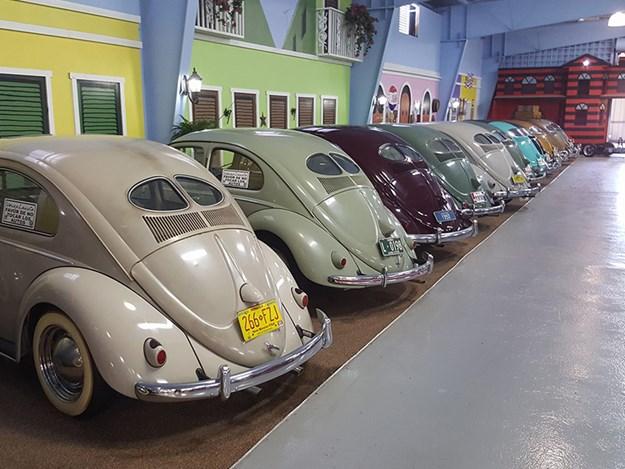 Volkyland-sale-beetles.jpg