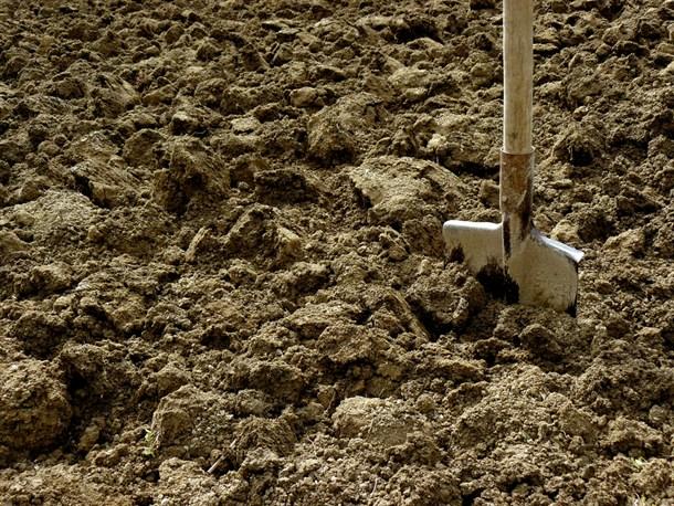 Soil Type Cultivator