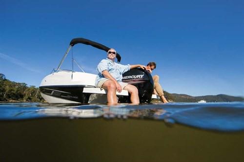 Bayliner 190 Deck Boat at rest