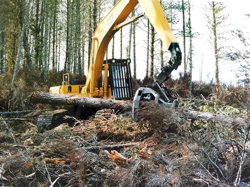 Logging1