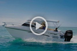 Powercat 3100 Platinum Series Cruiser video