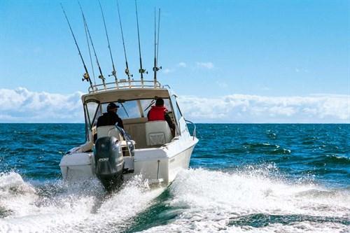 Caribbean Reef Runner Hardtop