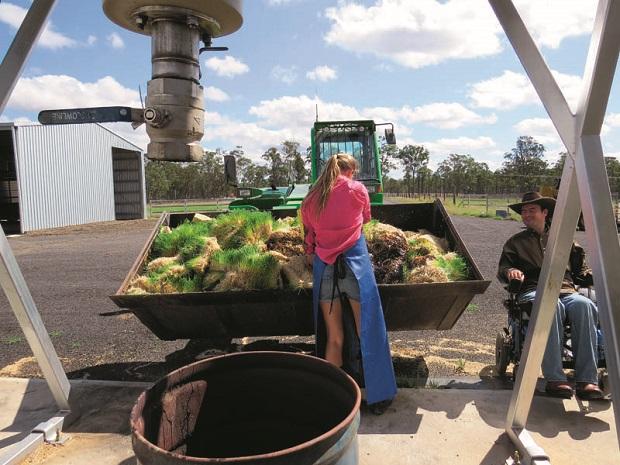 Rob Cook Profile _monitoring On -farm _3327