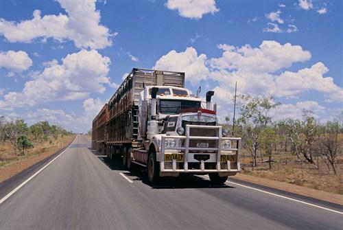 Livestock Road Train