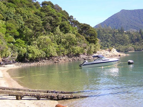 Boat _ramp _NZ