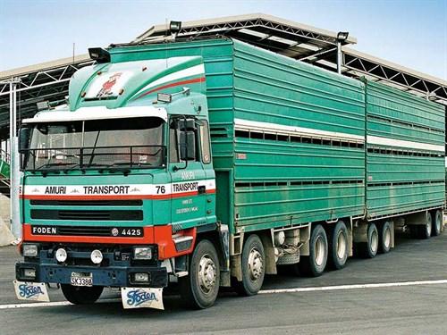 Amuri -Transport -fleet -2