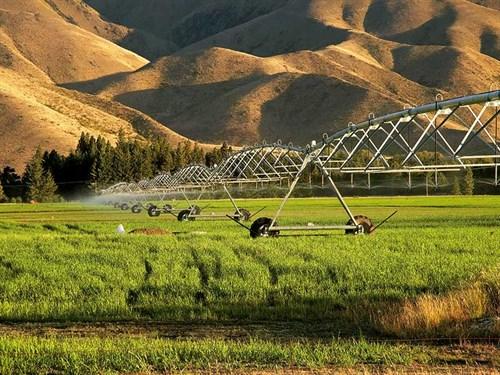 Anti -farming -sentiment -NZ