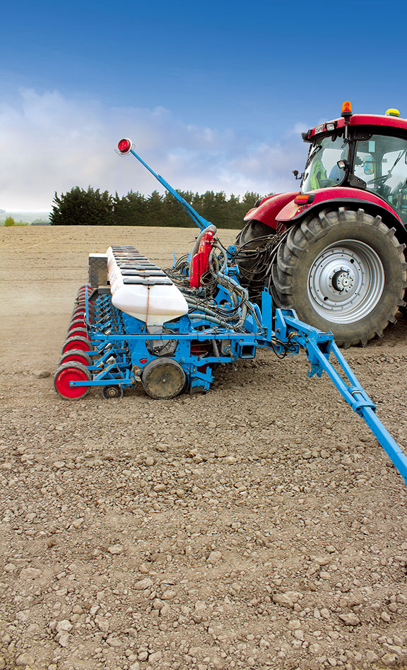 The Monosem can plant fodder beet at 80,000 seeds per hectare
