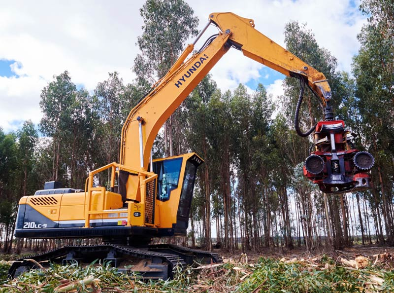 RMT-Harvesting