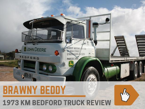 Brawny Beddy Review